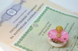 Законопроект о нецелевой выплате 20 тыс. рублей из маткапитала внесен в Кабмин